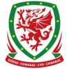 Wales Lasten Paidat